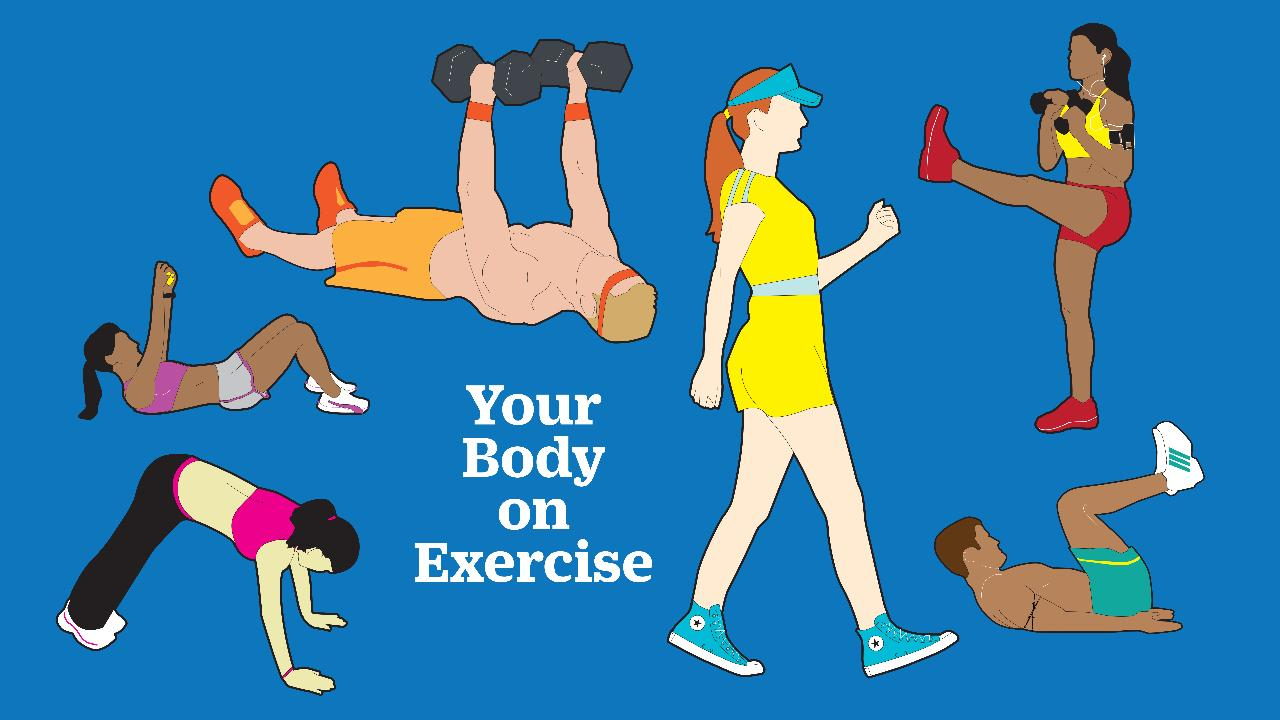 Home fitness exercises that will help you with your study activities
